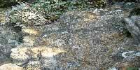Les couleurs de la Bretagne en Ille-et-Vilaine aux rochers sculptés de Rothéneuf - Bretagne 35400